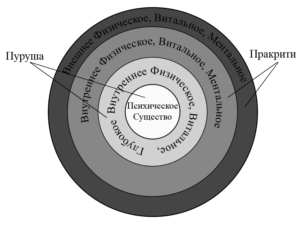 Рис.1 Схема Концентрических Колец