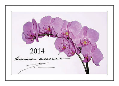 Послание из Ашрама к Новому 2014 Году
