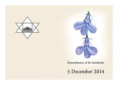 Даршан 5 декабря 2014